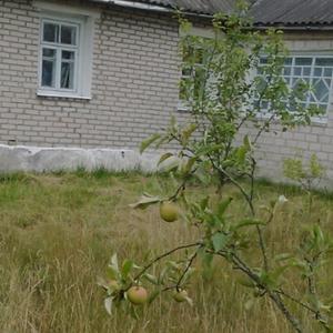 Кирпичный дом в г. Березовка
